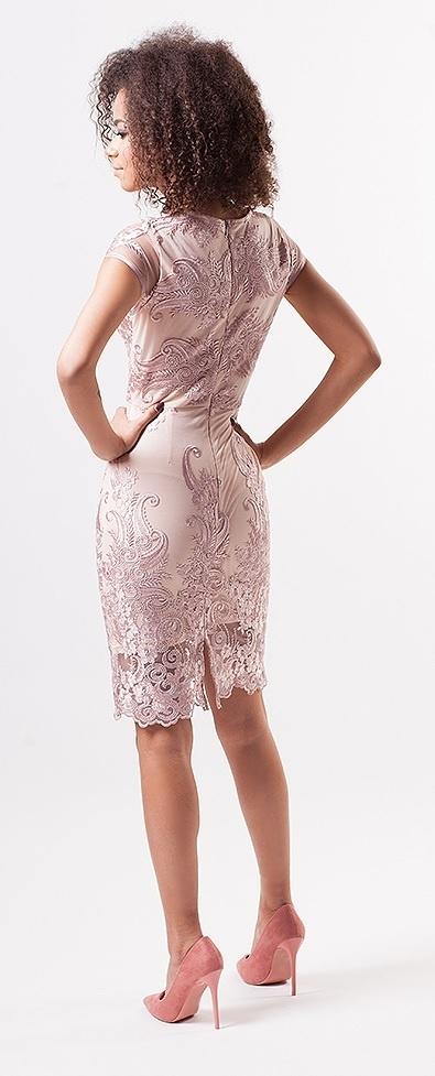 ac7ba9e41f97 ... pudrové Pouzdrové šaty Lace